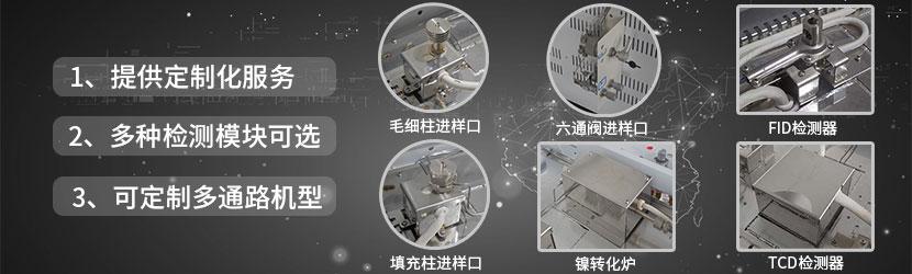 GC2030气相色谱仪Plus模块化设计